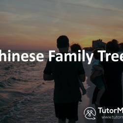 Talk Family tree in Spoken Chinese