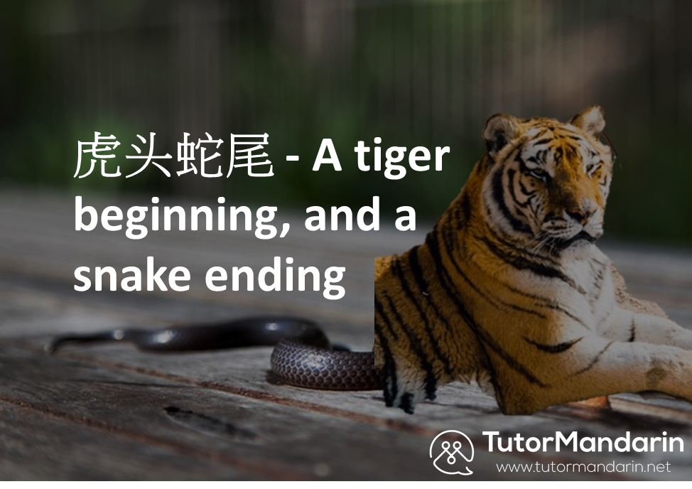 Tiger beginning and a snake like ending - tutormandarin 1-on-1 online lessons