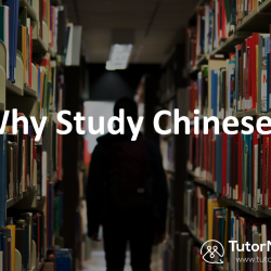 Why Study Chinese? 1-on-1 online Chinese lesson