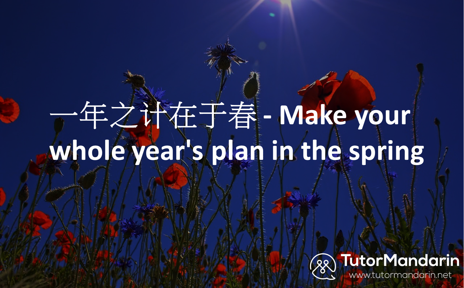 Make your whole year's plan in Spring/ tutormandarin