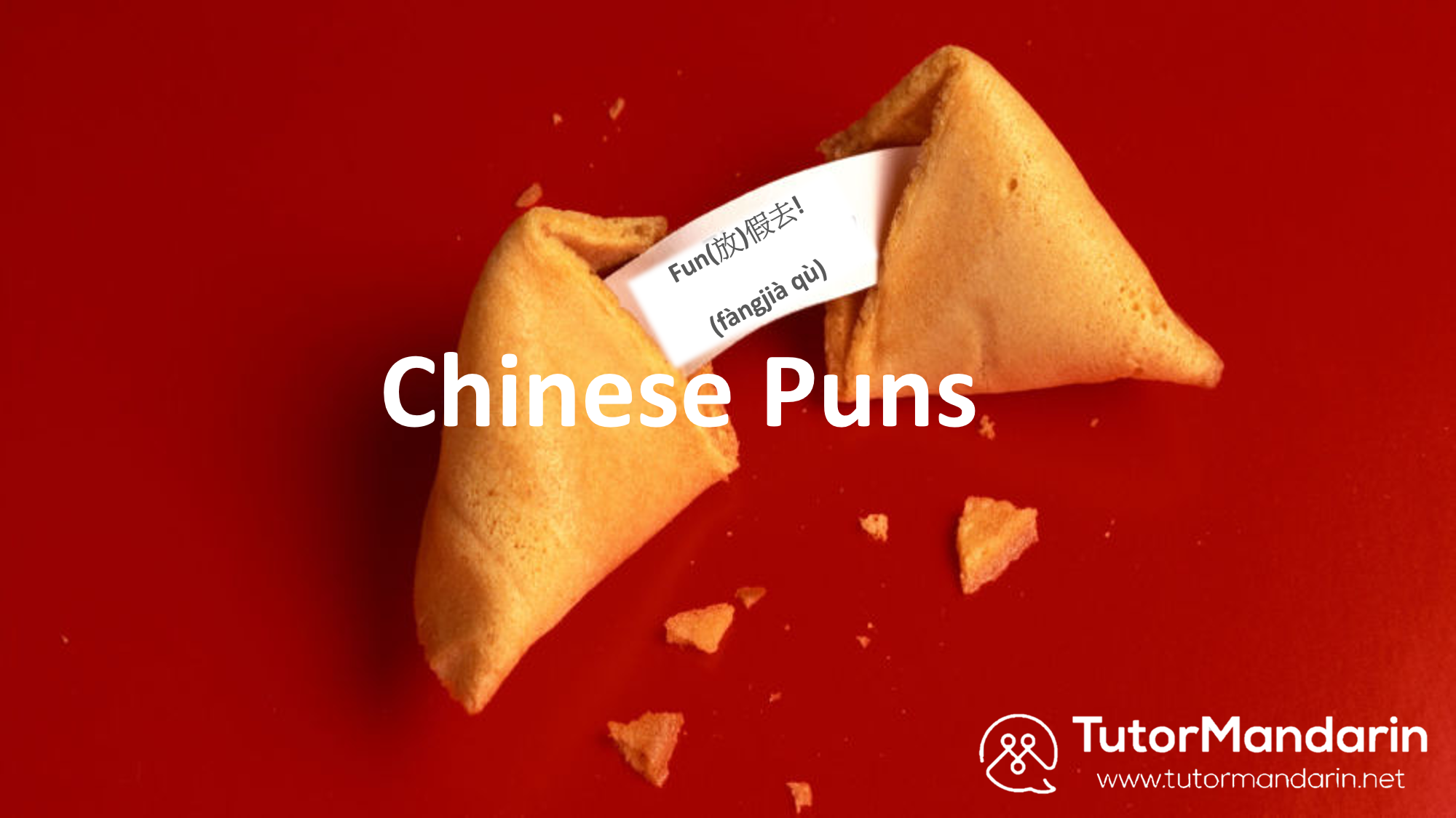 Chinese Puns - 1-on-1 chinese online lesson