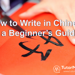 a Beginner guide in Chinese writing