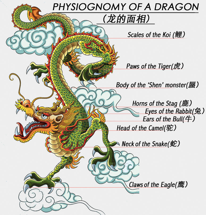 Chinese mythology of dragon appearances